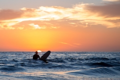 20-ANYE-Santa-Barbara-CA-ocean-surfer-sunset